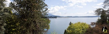 Water front villa with pool and private beach on Lake Maggiore
