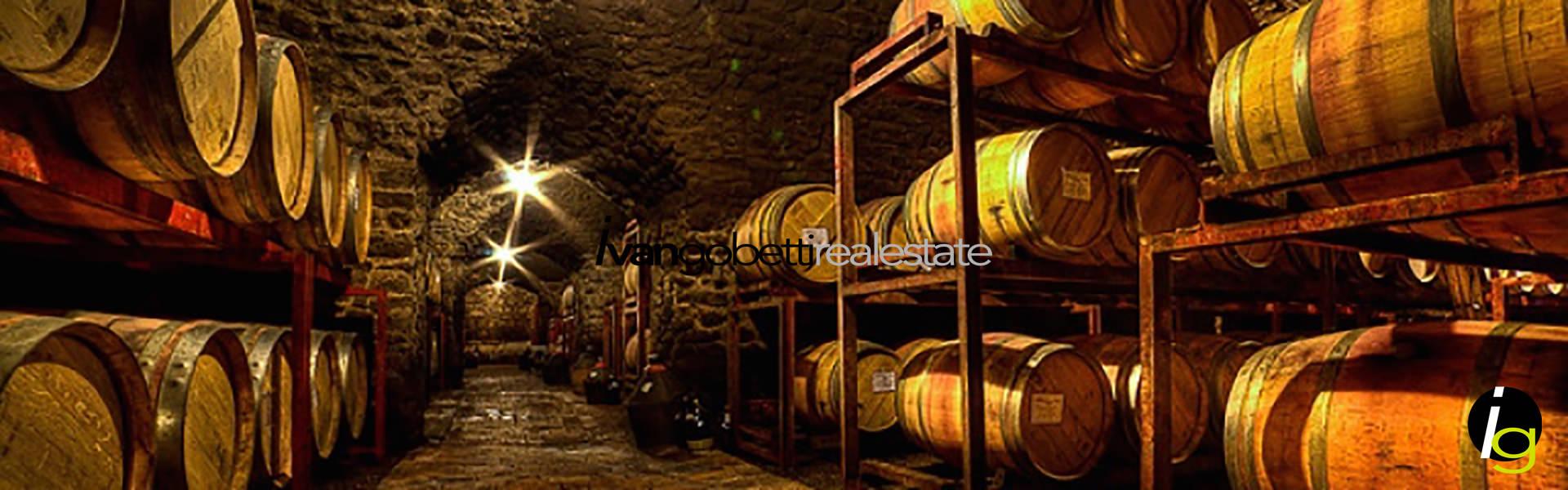 In vendita importante azienda vinicola