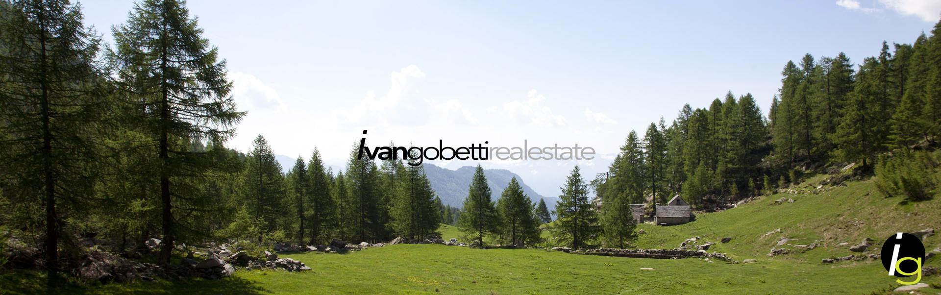 Vendesi proprietà costituita da due villette con parco immerse nella natura a Varzo, Alpi Nord Italia