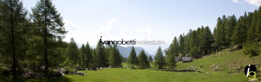 For sale villas with park immersed in nature in Varzo, Alps, Northern Italy